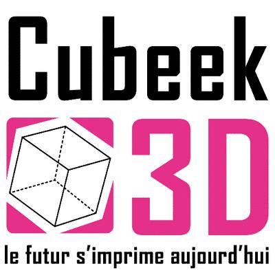 Cubeek3D : la 1ère boutique d'impression 3D en France !