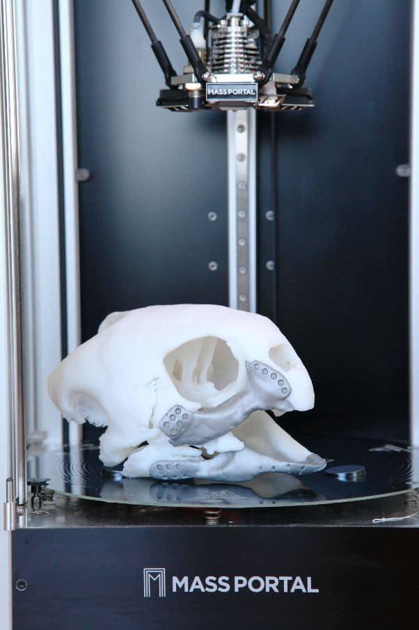tortue imprimante