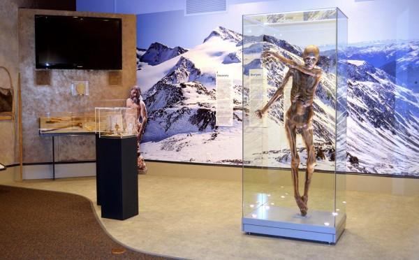 Otzi musée DNA