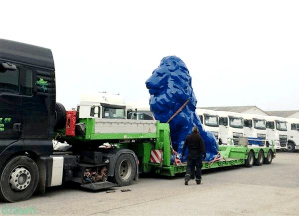 transport lion