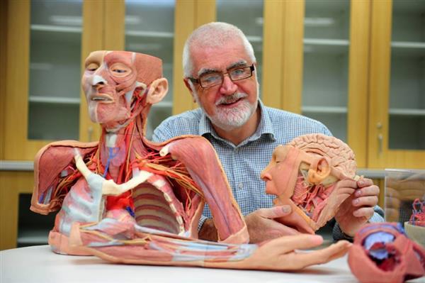 modèle anatomique imprimés en 3D