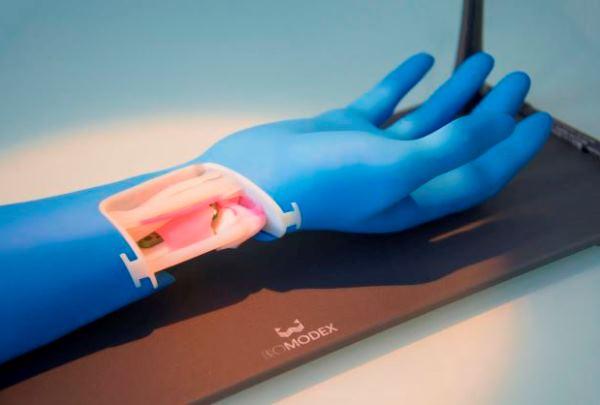 Rencontre avec BIOMODEX : une start-up française prête à révolutionner la chirurgie avec ses organes imprimés en 3D