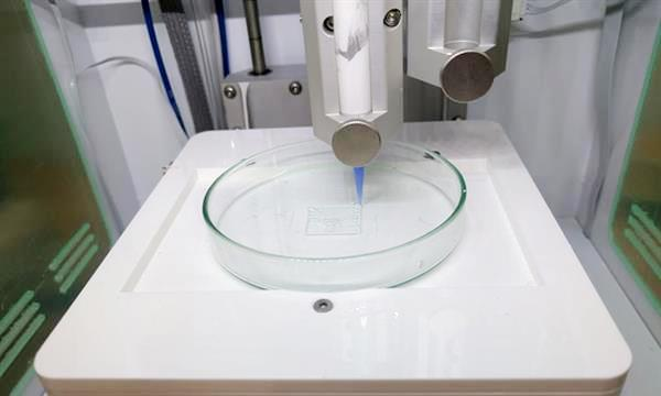 Un os imprimé en 3D implanté avec succès sur une souris