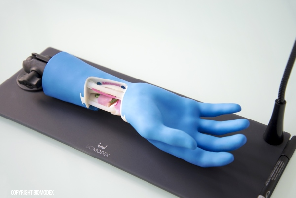 modèle médical impression 3d
