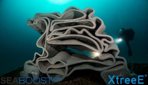 récif artificiel imprimé en 3D
