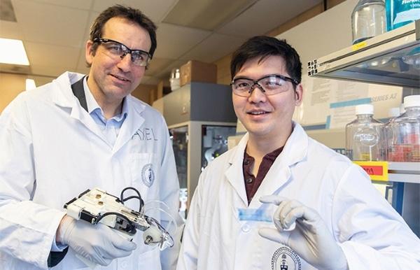 chercheurs en bioimpression 3D