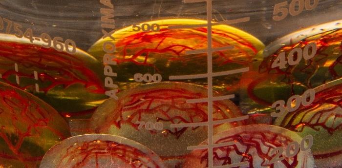CollPlant collabore avec 3D Systems pour la bio-impression de plusieurs échafaudages tissulaires