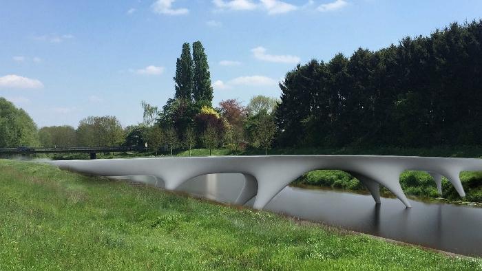 proect bridge